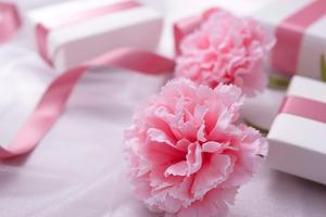 5月10日は母の日!母の日のプレゼントに選びたいアイテム!